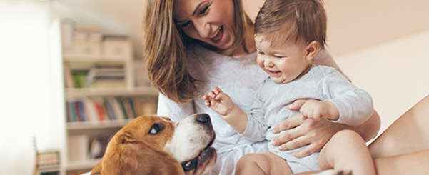 Take Paws: Baby Playing With Pets